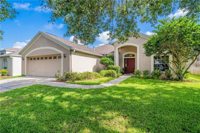 7520 Regents Garden Way, Apollo Beach, FL 33572 (MLS #T3182506) :: Team Bohannon Keller Williams, Tampa Properties