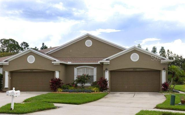 30351 Lettingwell Circle, Wesley Chapel, FL 33543 (MLS #T3182518) :: The Duncan Duo Team