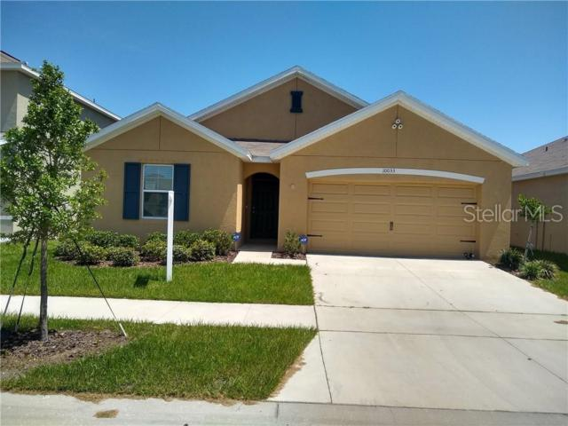 10033 Geese Trail Circle, Sun City Center, FL 33573 (MLS #T3182528) :: The Duncan Duo Team