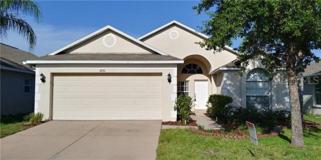 4220 Edenrock Place, Wesley Chapel, FL 33543 (MLS #T3182546) :: Advanta Realty