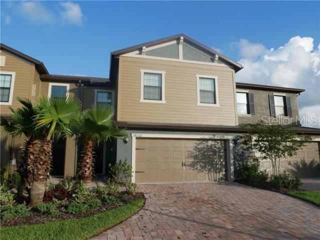 28502 Tranquil Lake Circle, Wesley Chapel, FL 33543 (MLS #T3182554) :: Team Bohannon Keller Williams, Tampa Properties