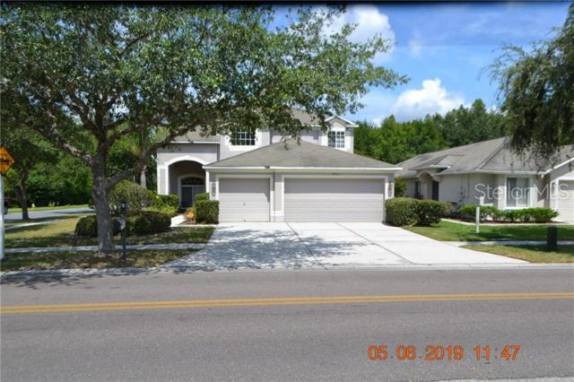 18110 Sandy Pointe Drive, Tampa, FL 33647 (MLS #T3182587) :: Dalton Wade Real Estate Group