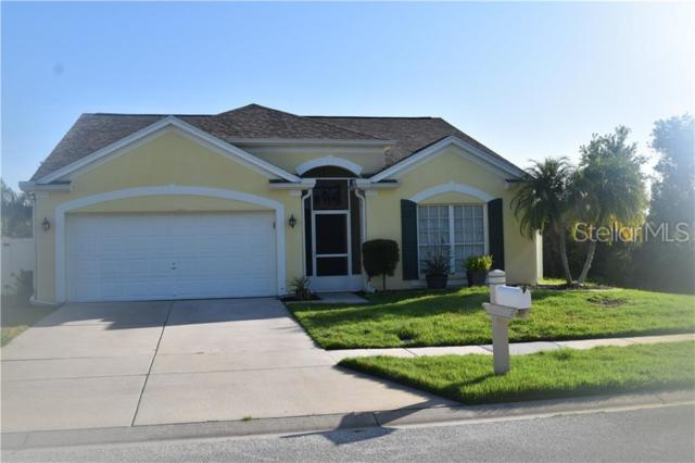 29727 Morningmist Drive, Wesley Chapel, FL 33543 (MLS #T3182597) :: The Duncan Duo Team