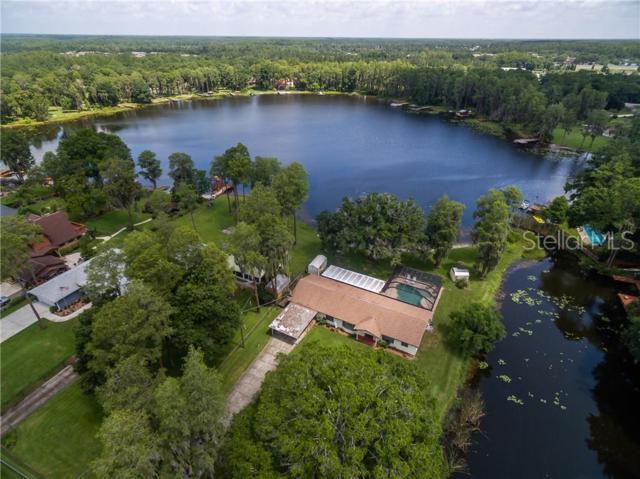 17030 Dennis Road, Lutz, FL 33558 (MLS #T3182600) :: Team Bohannon Keller Williams, Tampa Properties
