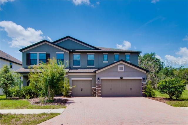 19444 Whispering Brook Drive, Tampa, FL 33647 (MLS #T3182605) :: The Duncan Duo Team