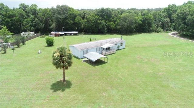 10436 Cheyenne Pass, Brooksville, FL 34601 (MLS #T3182626) :: Burwell Real Estate