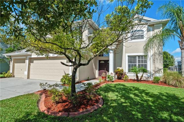 19216 Inlet Cove Court, Lutz, FL 33558 (MLS #T3182632) :: The Duncan Duo Team