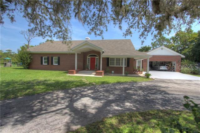 15023 W County Line Road, Odessa, FL 33556 (MLS #T3182641) :: Cartwright Realty