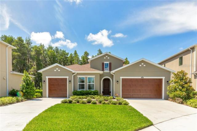 1652 Hidden Springs Drive, New Port Richey, FL 34655 (MLS #T3182651) :: Cartwright Realty