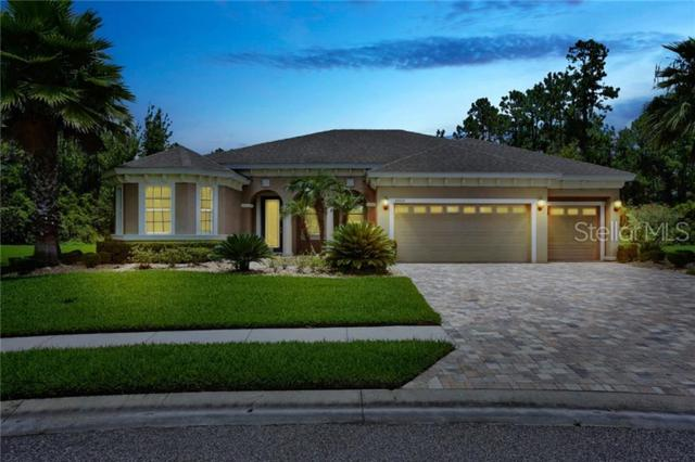32015 Summerglade Drive, Wesley Chapel, FL 33545 (MLS #T3182679) :: Griffin Group