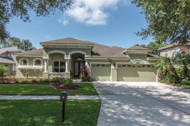 15209 Merlinpark Place, Lithia, FL 33547 (MLS #T3182757) :: The Duncan Duo Team