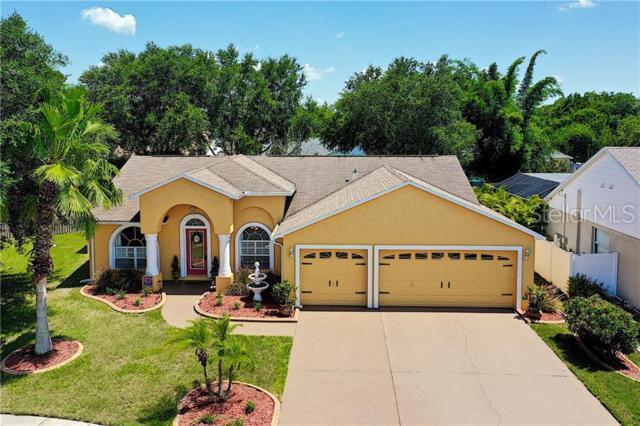 11603 Wiscassel Court, Riverview, FL 33569 (MLS #T3182775) :: Griffin Group