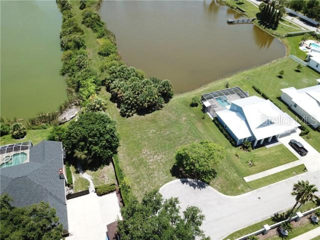8017 Key West Conch Drive, Riverview, FL 33578 (MLS #T3182776) :: Team Bohannon Keller Williams, Tampa Properties