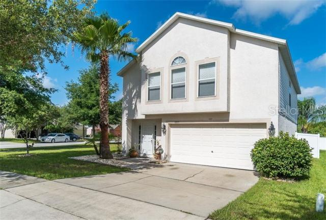 13537 Padron Court, Riverview, FL 33579 (MLS #T3182777) :: The Duncan Duo Team