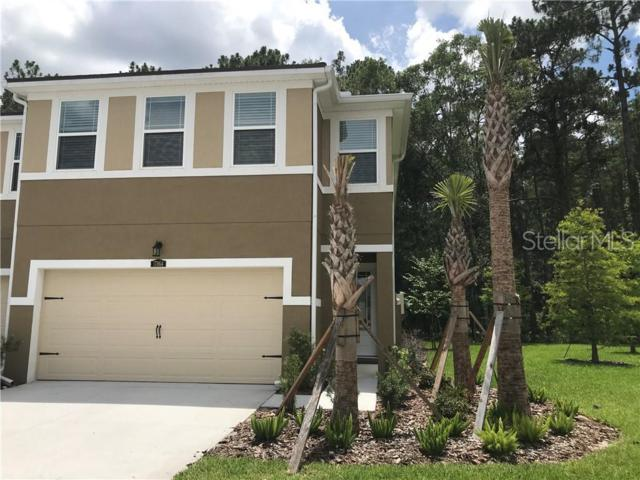 17864 Althea Blue Place, Lutz, FL 33558 (MLS #T3182805) :: Team Bohannon Keller Williams, Tampa Properties