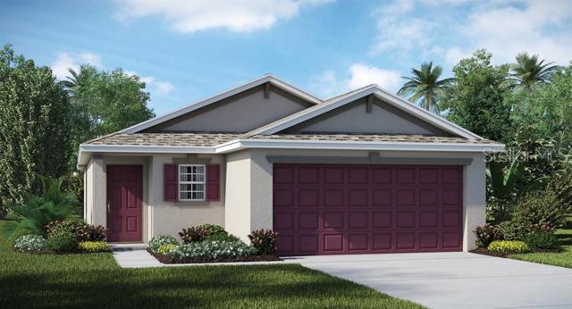 7018 Emerald Spring Loop, New Port Richey, FL 34653 (MLS #T3182810) :: Lock & Key Realty