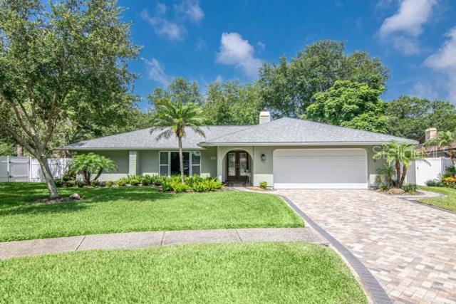 10008 Linden Place Drive, Seminole, FL 33776 (MLS #T3182835) :: Team 54