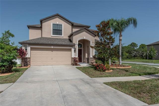 13250 Wellington Hills Drive, Riverview, FL 33579 (MLS #T3182838) :: The Duncan Duo Team