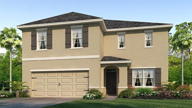 14152 Arbor Pines Drive, Riverview, FL 33579 (MLS #T3182843) :: The Duncan Duo Team