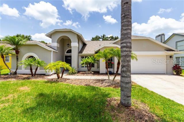 5418 Pine Bay Drive, Tampa, FL 33625 (MLS #T3182844) :: CENTURY 21 OneBlue