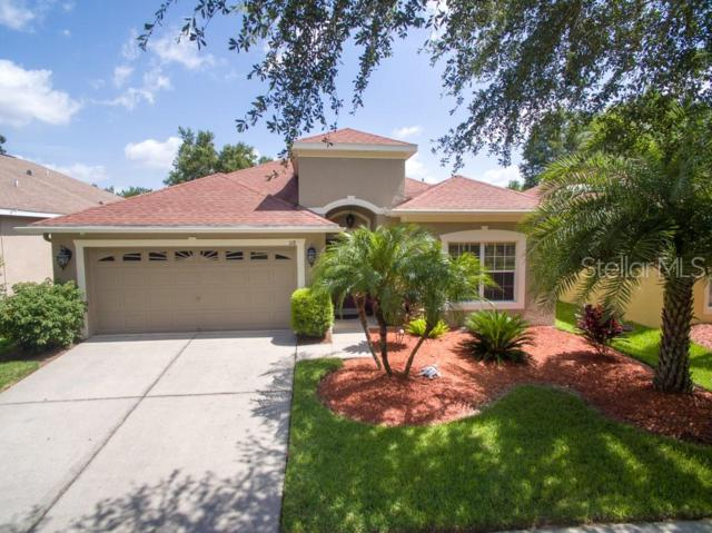 1118 Emerald Hill Way, Valrico, FL 33594 (MLS #T3182849) :: Griffin Group