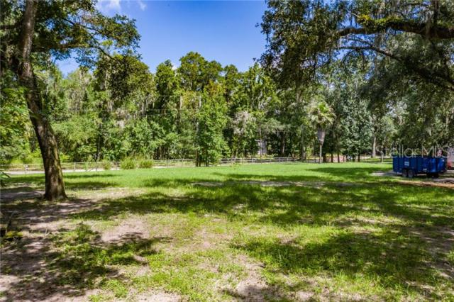Coconut Cove Place, Valrico, FL 33596 (MLS #T3182853) :: Griffin Group