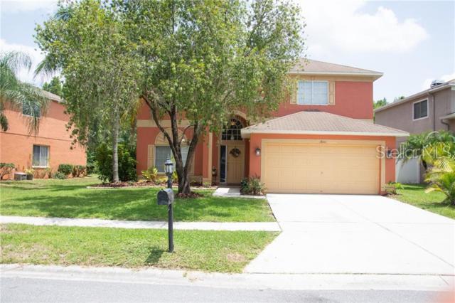 18161 Sandy Pointe Drive, Tampa, FL 33647 (MLS #T3182858) :: Lovitch Realty Group, LLC