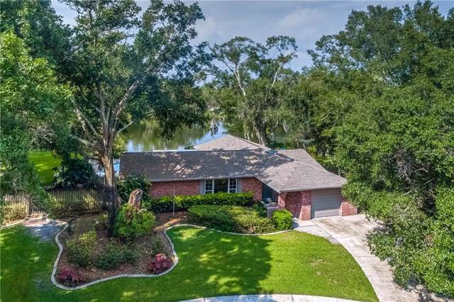 14004 Tish Place, Tampa, FL 33613 (MLS #T3182860) :: GO Realty