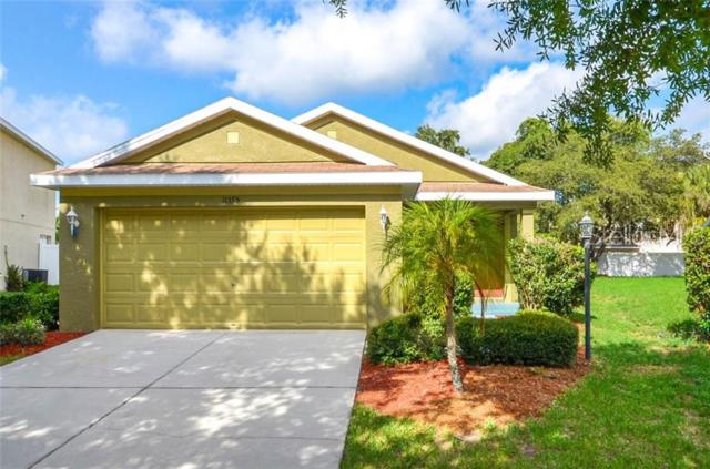 11375 Cocoa Beach Drive, Riverview, FL 33569 (MLS #T3182863) :: The Duncan Duo Team