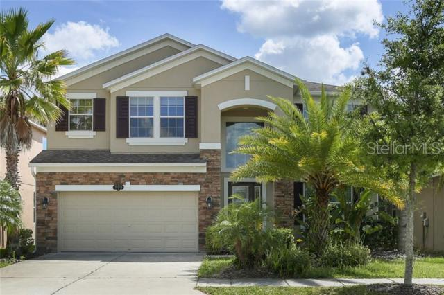 10776 Pictorial Park Drive, Tampa, FL 33647 (MLS #T3182867) :: Lovitch Realty Group, LLC