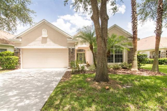 17917 Timber View Street, Tampa, FL 33647 (MLS #T3182895) :: Lovitch Realty Group, LLC