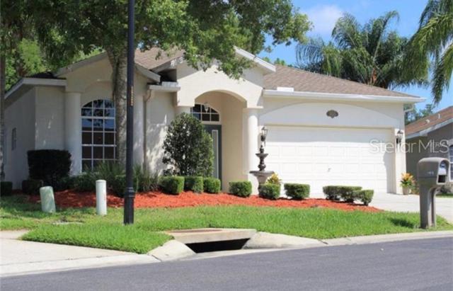 11615 Tee Time Circle, New Port Richey, FL 34654 (MLS #T3182929) :: Lock & Key Realty