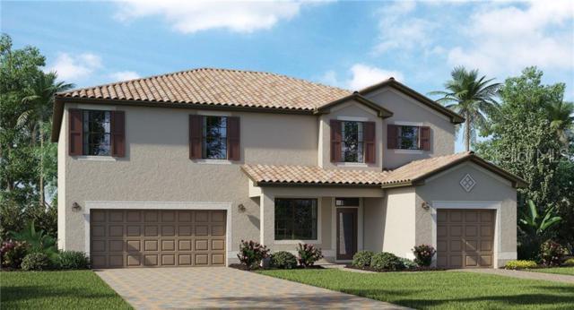 14324 Carolina Sky Place, Bradenton, FL 34211 (MLS #T3182967) :: Medway Realty
