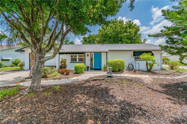 1805 El Rancho Drive, Sun City Center, FL 33573 (MLS #T3183003) :: Team 54