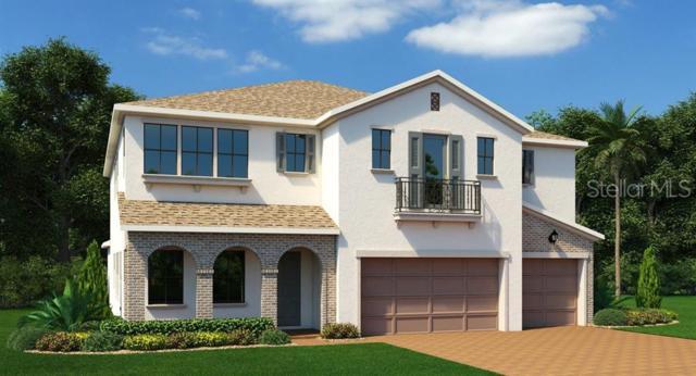 14492 Sunbridge Circle, Winter Garden, FL 34787 (MLS #T3183072) :: NewHomePrograms.com LLC