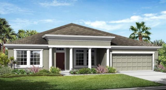 3346 Sagebrush Street, Harmony, FL 34773 (MLS #T3183085) :: CENTURY 21 OneBlue