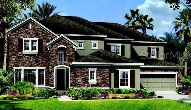 15871 Burch Island Court, Winter Garden, FL 34787 (MLS #T3183116) :: CENTURY 21 OneBlue