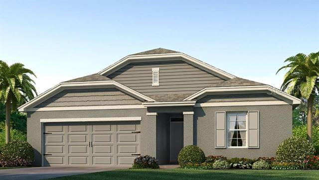 4513 Willow Breeze Way, Palmetto, FL 34221 (MLS #T3183143) :: The Comerford Group
