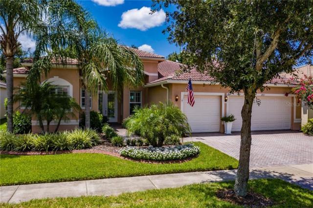 4977 Sapphire Sound Drive, Wimauma, FL 33598 (MLS #T3183245) :: Team Bohannon Keller Williams, Tampa Properties