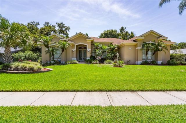 87 Wood Hall Drive, Mulberry, FL 33860 (MLS #T3183252) :: The Duncan Duo Team