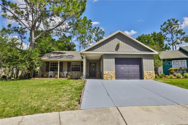 4624 S Country Hills Court, Plant City, FL 33566 (MLS #T3183327) :: Griffin Group