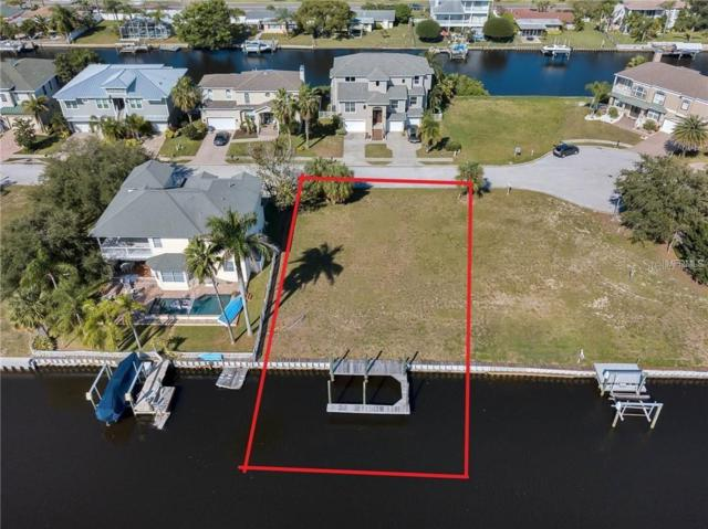220 Manatee Lane, Tarpon Springs, FL 34689 (MLS #T3183454) :: Team Bohannon Keller Williams, Tampa Properties