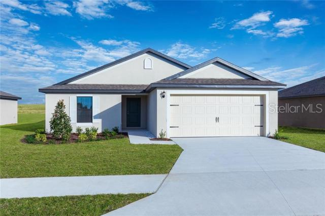 Address Not Published, Dundee, FL 33838 (MLS #T3183462) :: RE/MAX Realtec Group
