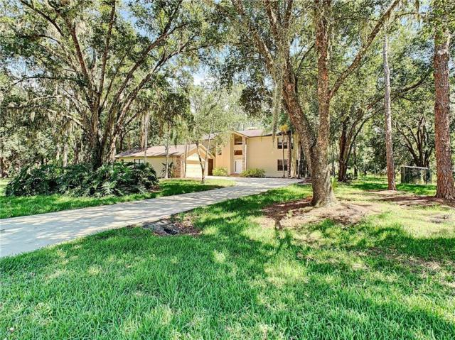27938 Arlington Road, Wesley Chapel, FL 33544 (MLS #T3183508) :: Griffin Group