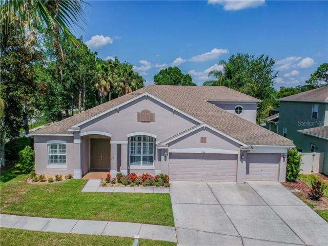 7106 Palmetto Pines Lane, Land O Lakes, FL 34637 (MLS #T3183536) :: Bustamante Real Estate