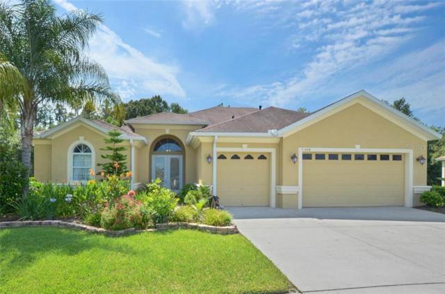 1508 Beaconsfield Drive, Wesley Chapel, FL 33543 (MLS #T3183642) :: Team Bohannon Keller Williams, Tampa Properties