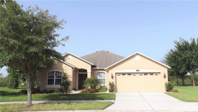 20104 Natures Hike Way, Tampa, FL 33647 (MLS #T3183643) :: Cartwright Realty