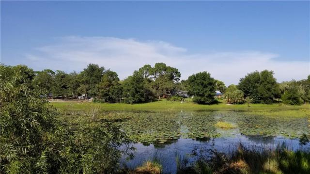 9761 Lake Drive, Weeki Wachee, FL 34613 (MLS #T3183681) :: Delgado Home Team at Keller Williams