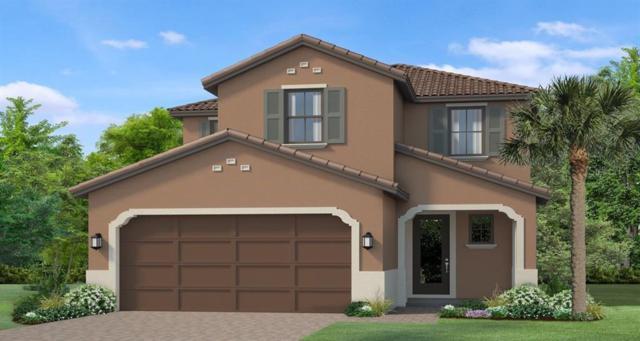 4766 Tramanto Lane, Wesley Chapel, FL 33543 (MLS #T3183691) :: Team Bohannon Keller Williams, Tampa Properties