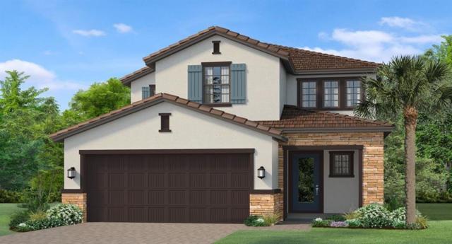 4782 Tramanto Lane, Wesley Chapel, FL 33543 (MLS #T3183695) :: Team Bohannon Keller Williams, Tampa Properties